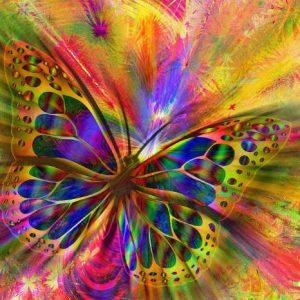 Bewusstwerdung Bewusstsein Transformation Lichtessenz