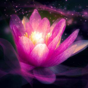 Selbstvertrauen Lichtessenz Transformation